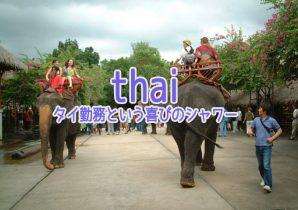 タイで働く駐在員について